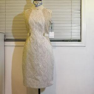 NWT CK Textured Shift Dress Sleeveless Size 6